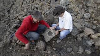 geode di quarzo ametista - Sardegna NE - (riprese video T.Gamboni)