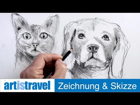 Ganz einfach zeichnen lernen 20: Tiergesichter