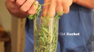 Bucksum Field Kitchen Episode 1 - Wild Rocket Pesto