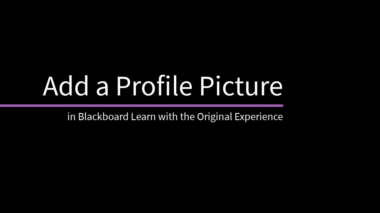 Profile blackboard help