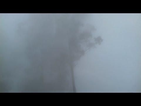 Pillar Rock Fully Covered by Mist - Ilayaraja Sir BGM