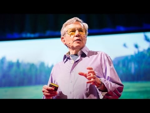 Bernie Krause: The voice of the natural world