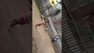 Little children's village dance