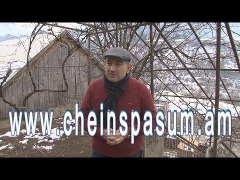 Nikol Pashinyan, Никол