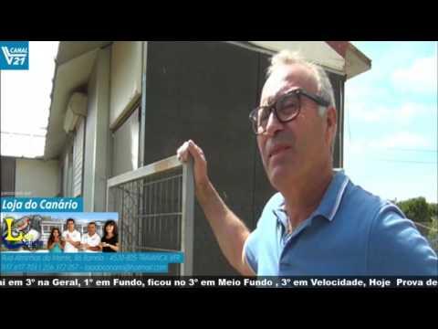 Columbofilia  VillaRobledo AAveiro  Fernando Soares Fajões - 3  VL21