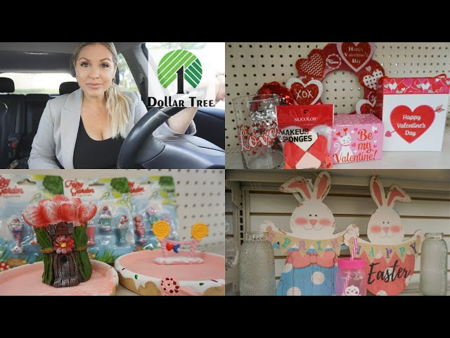Dollar Tree Shop With Me| EVERYTHING that's NEW at Dollar Tree January 2020| Megan Navarro