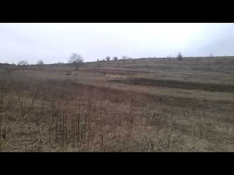 Freehold land for sale near Danube river