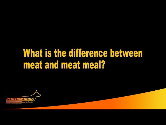What is the difference between meat and meat meal?