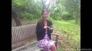 Vegan Fish Cake Recipe + Vegan Mayo Recipe + Kite Flying!