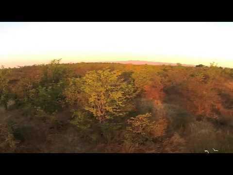 Musango Safari Camp | Matusadona National Park | Zimbabwe | Expert Africa