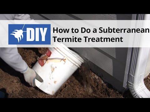How To Do a Subterranean Termite Treatment