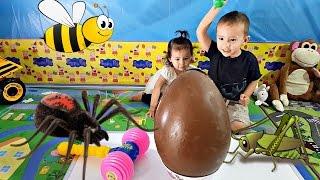 Трепку велетенський шоколадний сюрприз яйце, наповнений величезною іграшка жучки - сімейного відпочинку з дітьми іграшки та цукерки