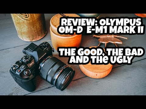 Review: Olympus OM-D E-M1 Mark II w/ M. Zuiko 12-40mm F/2.8 | It is NOT good
