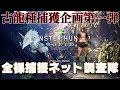 【モンハンワールド】 古龍種全裸捕獲ネット大作戦キリン編 【MHW】
