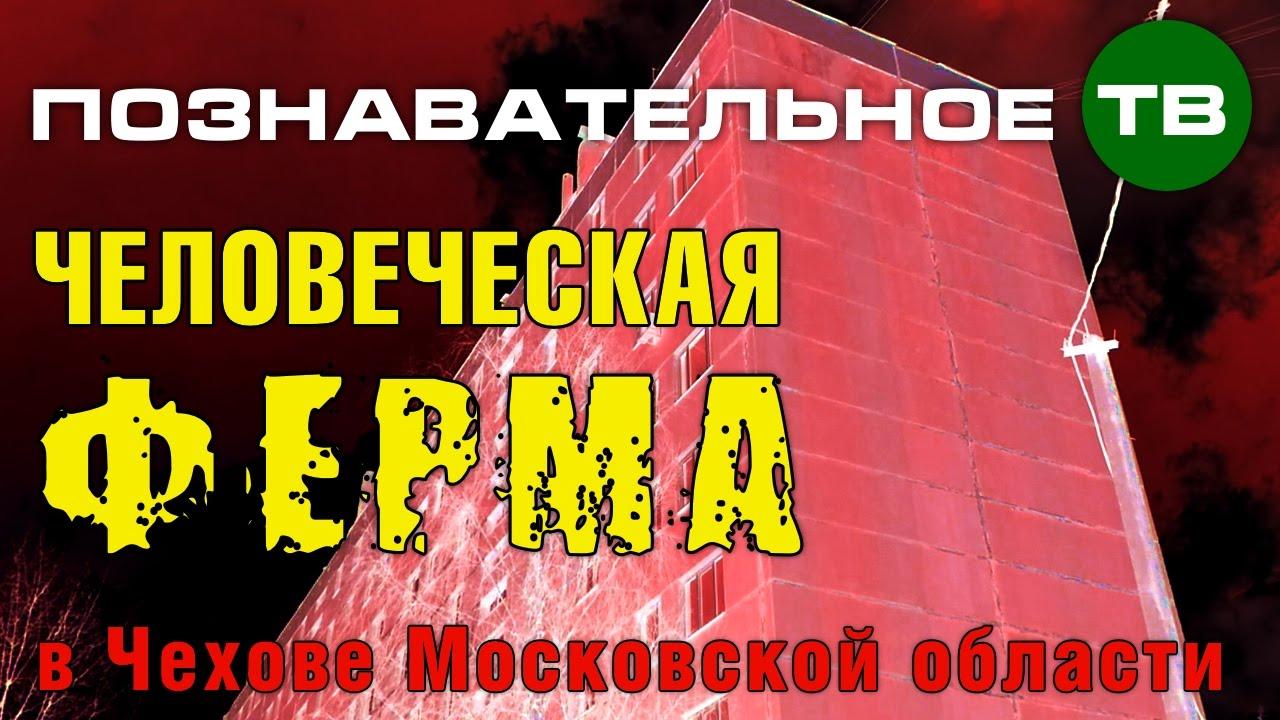 Картинки по запросу Заметки: Человеческая ферма в Чехове (Познавательное ТВ, Артём Войтенков)