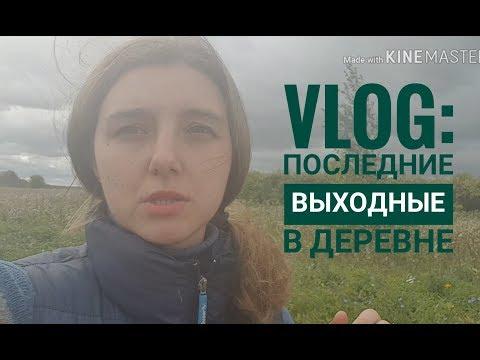 Vlog:музей Солоухина/деревня/нервные соседи