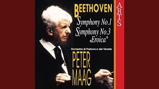 Symphony No. 3 Eroica Op. 55: IV. Finale - Allegro molto - Poco andante - Presto