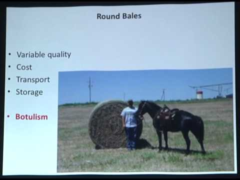 SRH  Veterinary Services- Basic Equine Nutrition