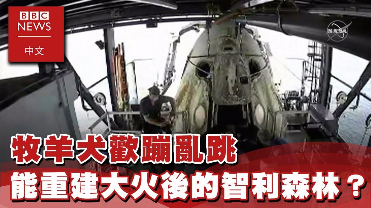 SpaceX:首架私人企業載人太空船返回地球- BBC News 中文X EBC東森新聞