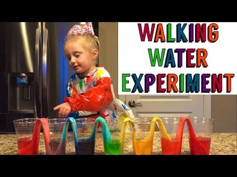 Walking Water Rainbow Bridge & Dinosaur Eggs