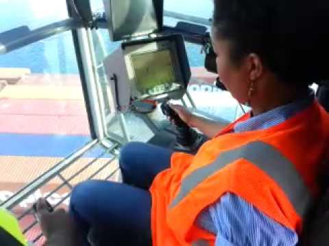 Roggy the crane operator
