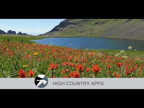Oregon Wildflowers - Apps on Google Play