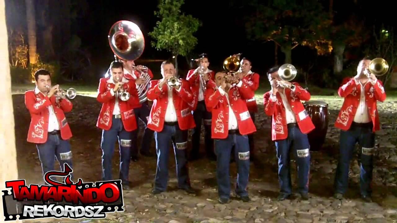 Banda Tierra Sinaloense De Chuy Lizarraga Musica De Viento Youtube
