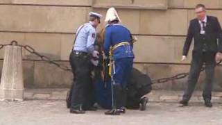 One of the royal guards faints at the swedish royal wedding