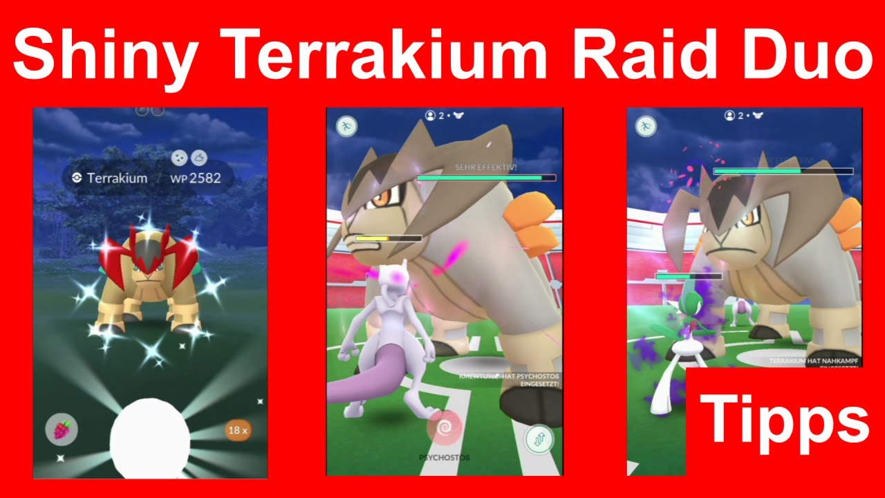 Shiny Terrakium Raid Duo gewinnen. Wie man Terrakium zu zweit Raid besiegt - Pokemon GO Deutsch 175