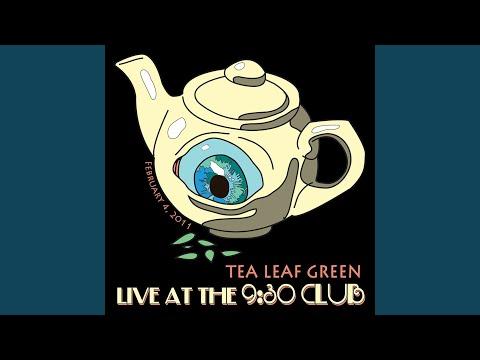 The Cottonwood Tree (Live) mp3