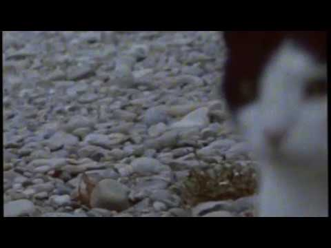 Orangensaft & Mäff - Tape [acoustic jam version]