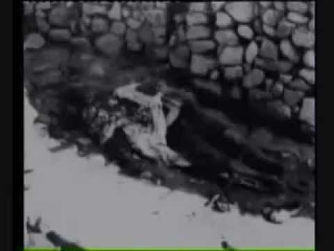 Algerian Genocide by France