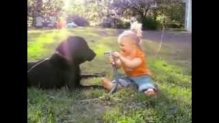 Baby And Dog Play Adorable Water Games