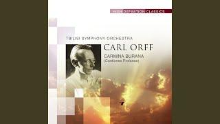 Carmina Burana (Cantiones Profanae) : Uf dem anger: Reie (Round-dance)