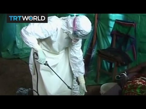 Ebola Virus: WHO confirms third case in the Democratic Republic of the Congo