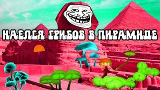 Наелся грибов в Пирамиде