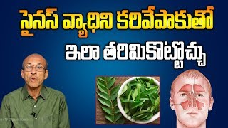 Reduce Sinuses Problems with Curry Leaf  Madhusudhana Sarma  SumanTV Organic Foods