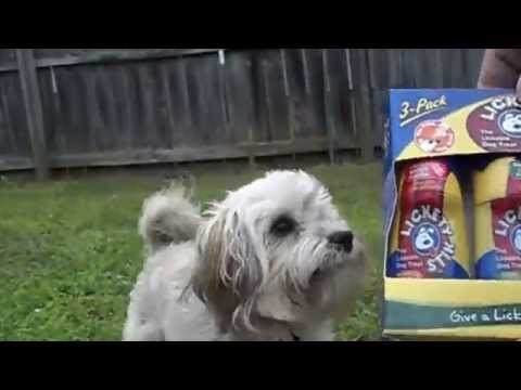 lickety-stick-dog-treat-review