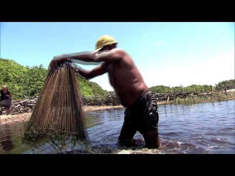 Conheça os brasileiros que vivem em isolamento nos lençóis maranhenses
