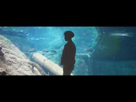 Raveen - Always [Official Video]