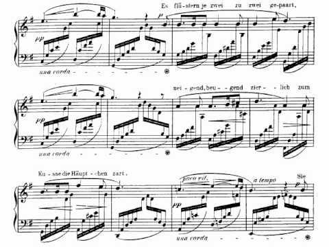 Robert Schumann / Clara Schumann - Der Nussbaum, Op. 25/3