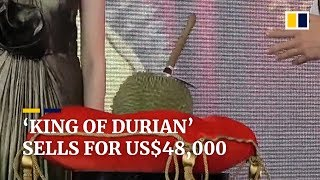 'King of durian' sells for US$48,000