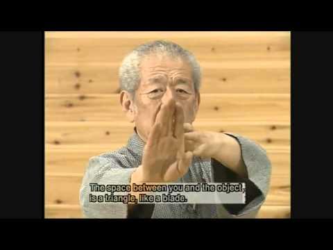 Masaaki Hatsumi   REAL NINJAS