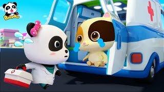 Bayi Panda Super Berubah Menjadi Dokter Kecil Lucu | Lagu Anak Anak | Bahasa Indonesia | Babybus
