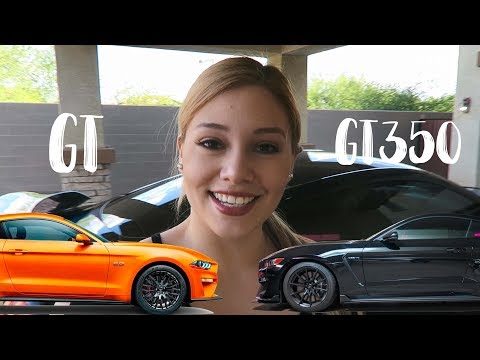 2019 Ford Mustang GT vs 2018 Shelby GT350 | Roll Racing