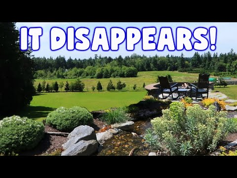 Disappearing *WATERFALL* In Canada