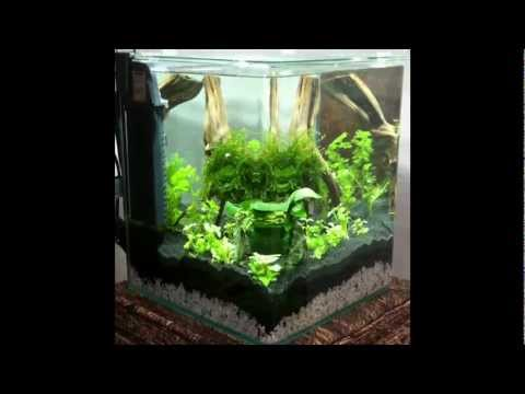 nano aquarium einrichten youtube. Black Bedroom Furniture Sets. Home Design Ideas