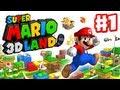 default - Nintendo Selects: Super Mario 3D Land - 3DS