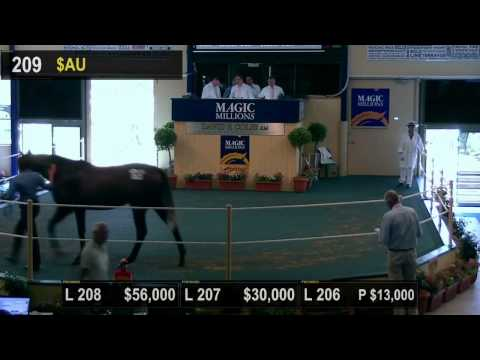 2015 Adelaide Magic Millions Yearling Sale Day 2