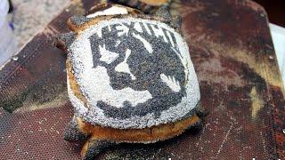 Bienvenidos al Mexipan | Mexico DF | Cursos de panes europeos artesenales de alta gama.